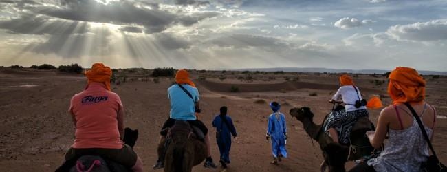 Une méharée dans le Sahara pour vous apaiser