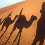 Quand partir en excursion au Maroc ?
