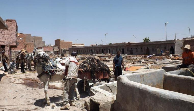 Départ du quartier des tanneurs pour les souks de marrakech