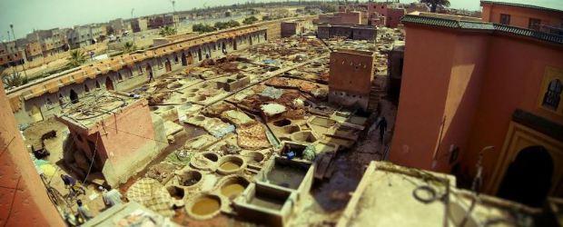 Découverte du quartier des tanneurs à Marrakech
